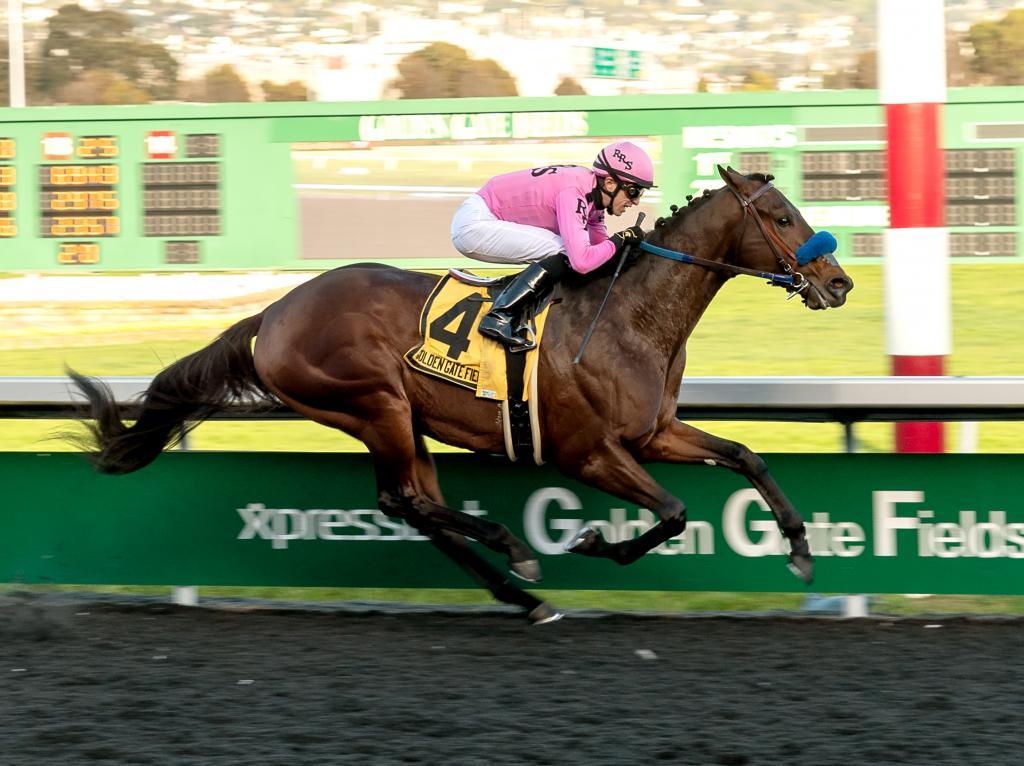 El Camino Real Derby winner Anothertwistafate. (Vassar Photography)