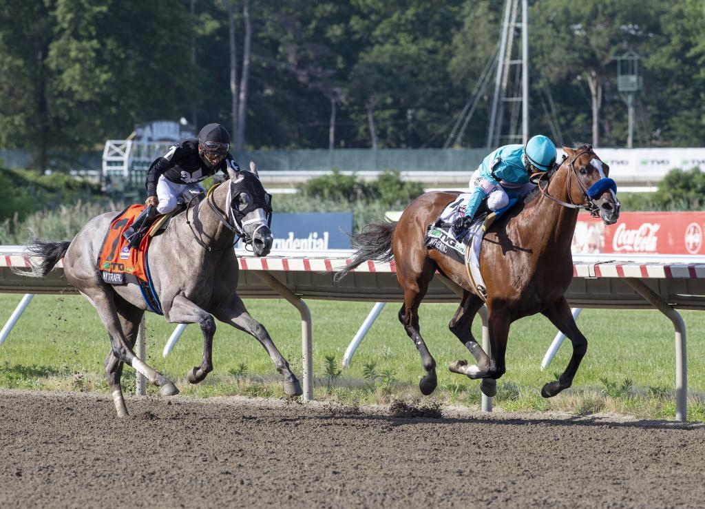 Authentic winning the TVG.com Haskell Stakes at Monmouth Park.