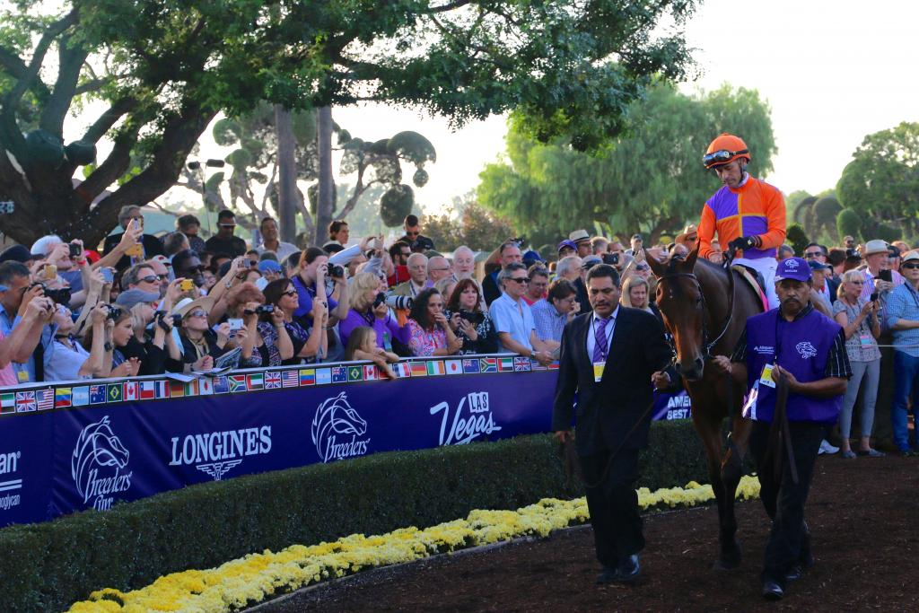 "After a lap around the walking ring, the call for ""riders up!"" came. With Gary Stevens aboard, Beholder made her way toward the track as fans strained to catch a final look at her before the Distaff. (Penelope P. Miller/America's Best Racing)"