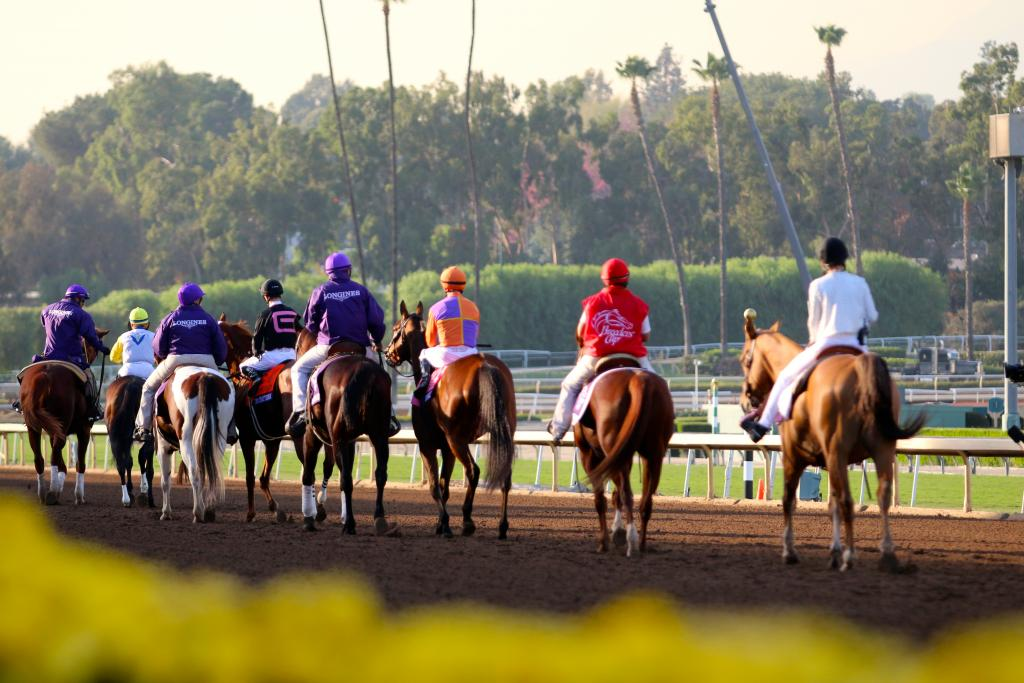 With minutes to go before the start of the Distaff, the Thoroughbreds and their jockeys warmed up under the late afternoon sun on a perfect Southern California day. (Penelope P. Miller/America's Best Racing)