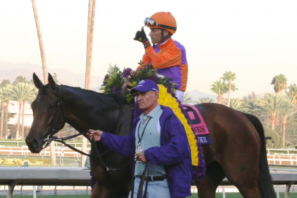When Beholder returned to the winner's circle, she was perfectly quiet. She circled for fans with her groom, Ruben Mercado, by her side, as he's been for four years, and seemed to drink in the adoration from the crowd. (Penelope P. Miller/America's Best Racing)