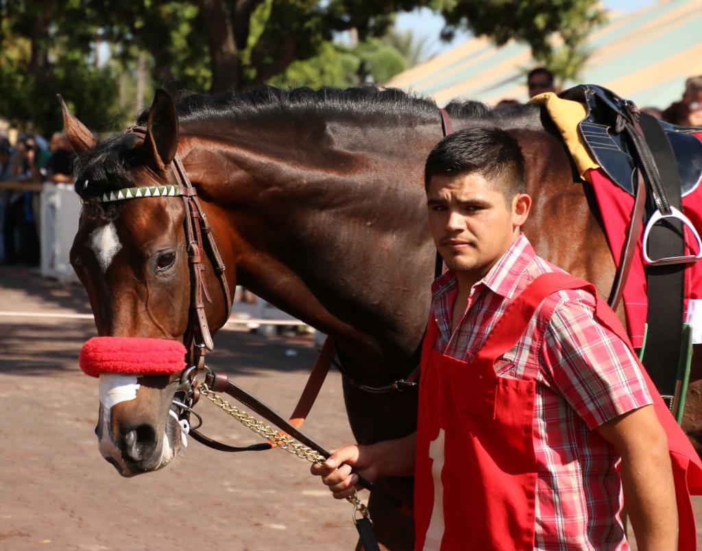 Robles before the Santa Anita Derby with Term of Art. (Julie June Stewart photo)