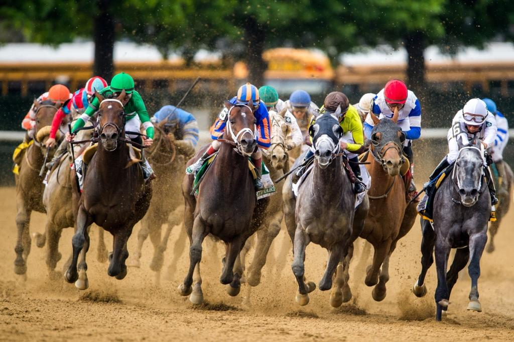 The field turns for home in the Belmont Stakes. (Eclipse Sportswire)