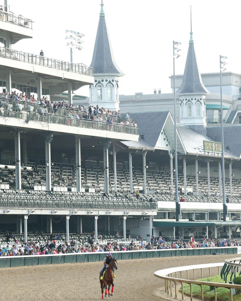Kentucky Derby 13th-place finisher Bodexpress. (Coady Photography)