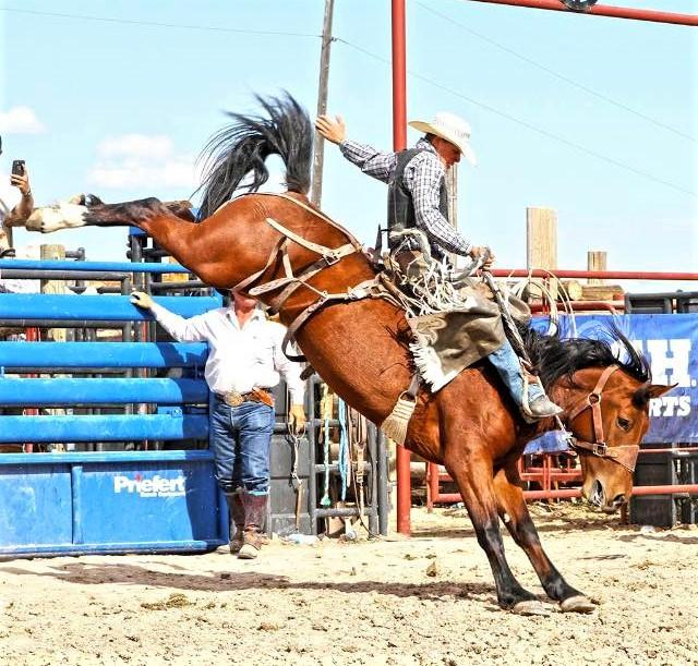 Bronc riding with style. (Courtesy of Taylor Cambra)