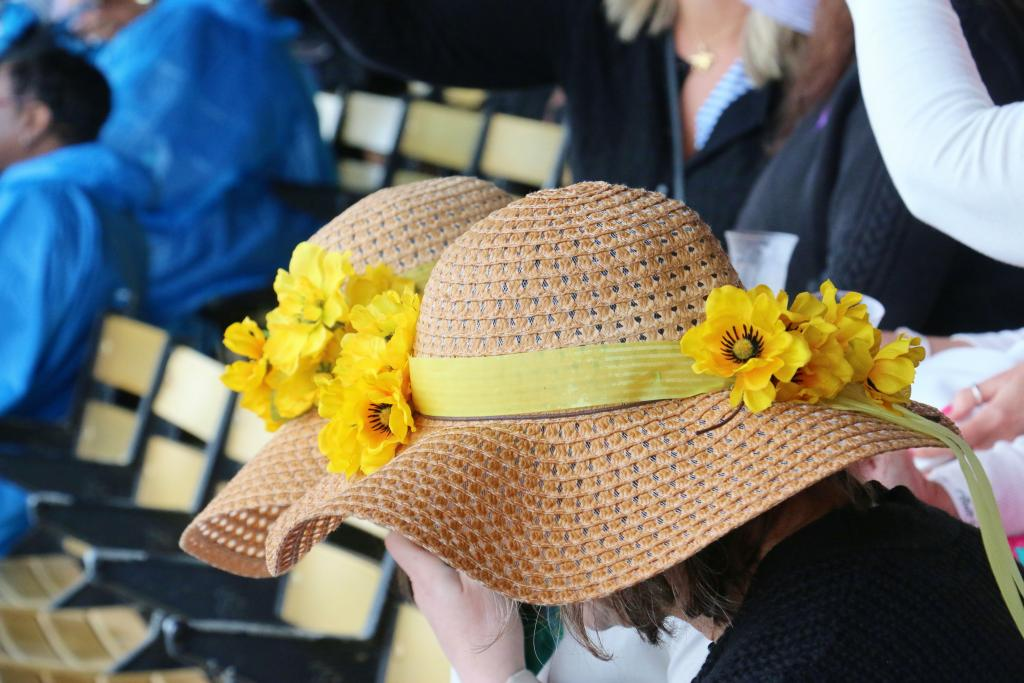 Black-Eyed Susan day handicappers. (Julie June Stewart photo)