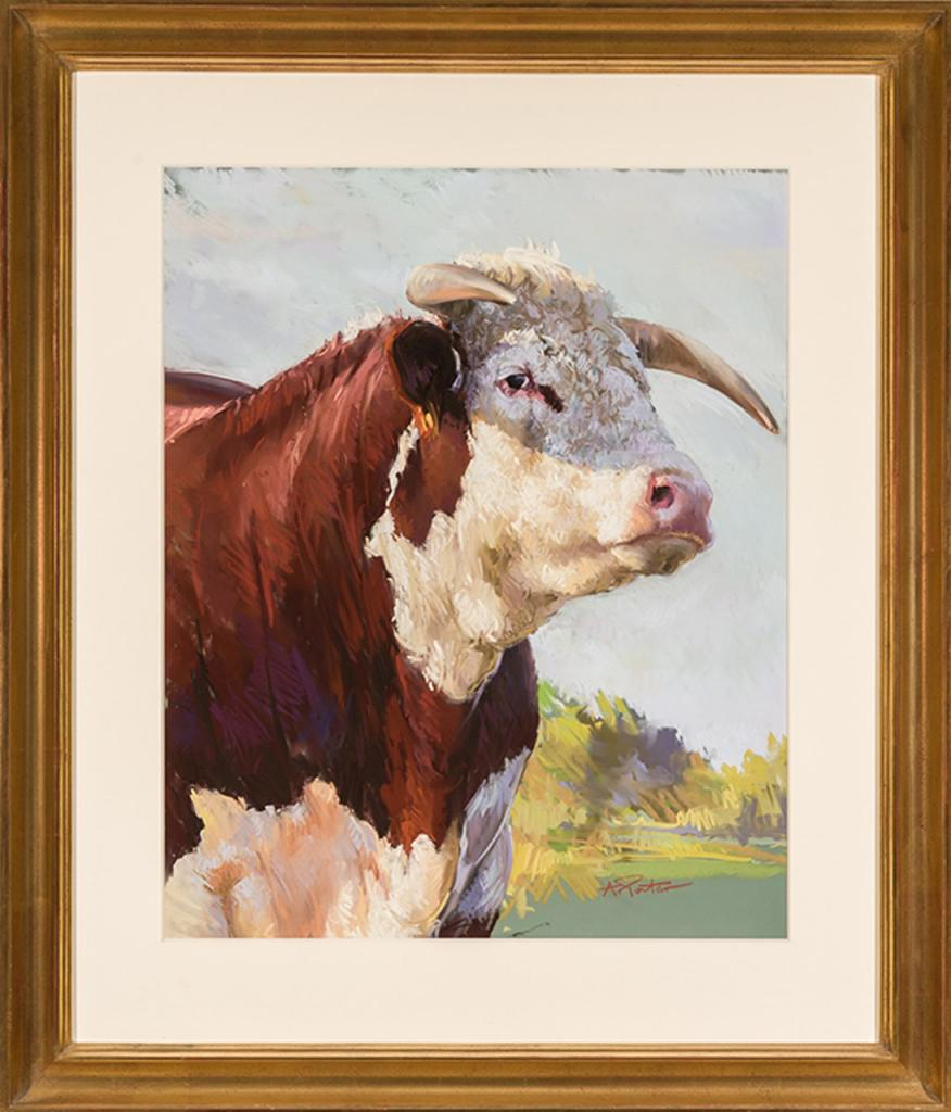 Bull, by Andre Pater (Courtesy of Cross Gate Gallery)