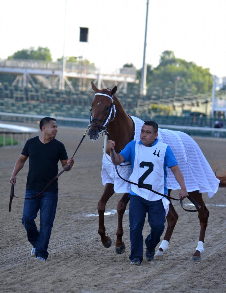 The headliner of the race was Kentucky Derby third-place finisher Gun Runner. He was making his first start since the Derby and looked ready to run. (Melissa Bauer-Herzog/America's Best Racing)
