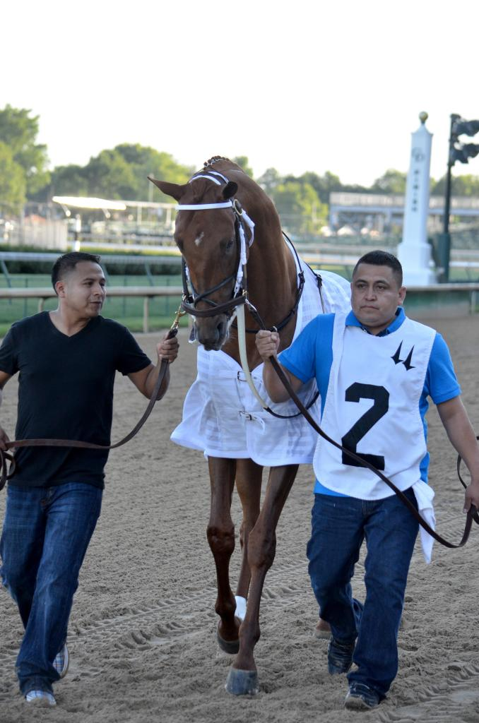 The closer he got to the paddock, the bigger Gun Runner grew. I'm pretty sure he grew a hand (horse speak for four inches) on the walk over. (Melissa Bauer-Herzog/America's Best Racing)