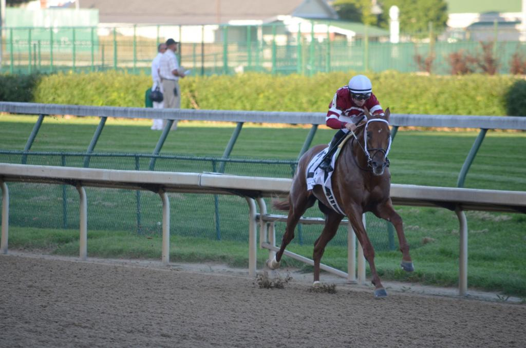 By the time they got back to the stretch, Gun Runner was an easy victor. He pulled away to win by a solid 5 ¼ lengths. (Melissa Bauer-Herzog/America's Best Racing)