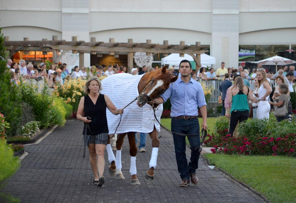 As post time approached, Wise Dan was ready to run and not too happy that he'd be staying behind as the rest of the field headed out. (Melissa Bauer-Herzog/America's Best Racing)