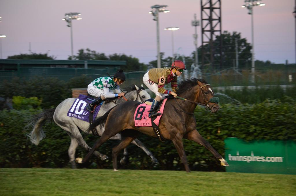 Pleuven earned his first graded stakes victory in the race when he beat Kasaqui by three-quarters of a length in the twilight. (Melissa Bauer-Herzog/America's Best Racing)