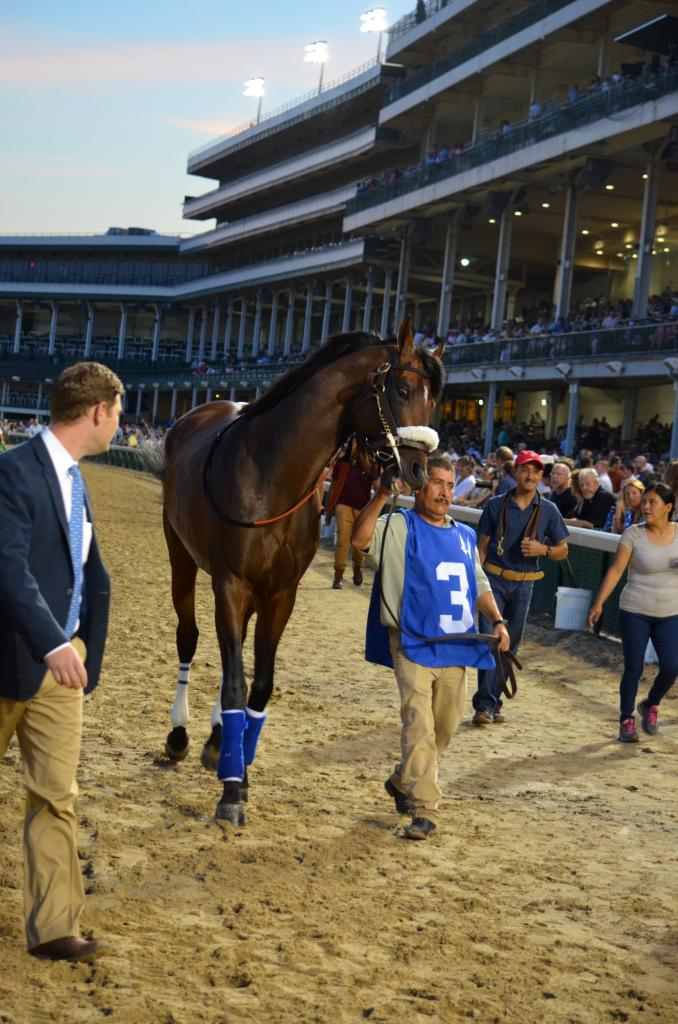 """The next race of the evening was the headliner, the Stephen Foster Handicap. A """"Win and You're In"""" for the Breeders' Cup Classic, last year's Classic runner-up Effinex was the favorite and he was on his toes for the race. (Melissa Bauer-Herzog/America's Best Racing)"""