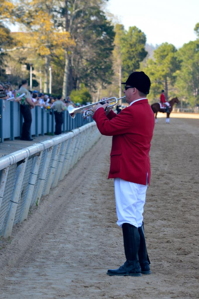 Call to the post at Oaklawn. (Sara Dacus photo)