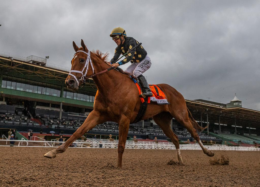 Grade 1 winner Ce Ce, the third-place finisher in the Grade 1 Clement Hirsch Stakes in August at Del Mar. (Eclipse Sportswire)