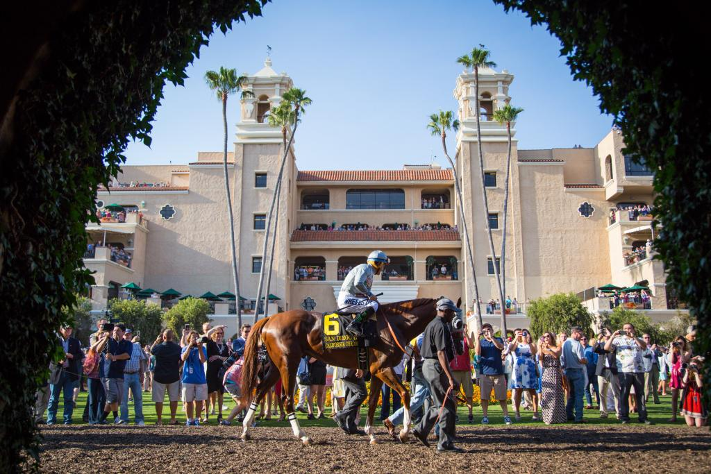 California Chrome at Del Mar. (Eclipse Sportswire)