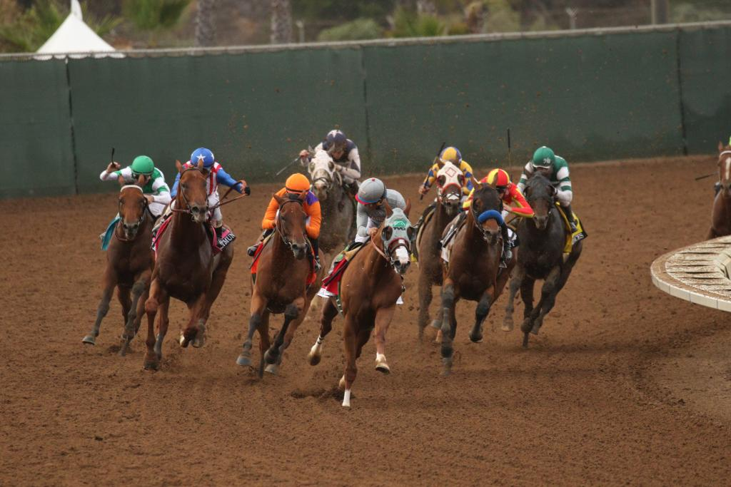 California Chrome leads the field into the homestretch of the Pacific Classic. (Eclipse Sportswire)
