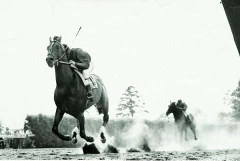 Citation wins the 1948 Belmont Stakes to sweep the Triple Crown. (BloodHorse Library)