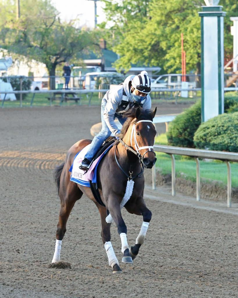 Fantasy Stakes third-place finisher Coach. (Coady Photography)