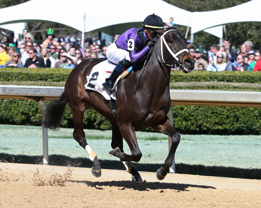 Warrior's Charge won an allowance race April 12 at Oaklawn Park. (Coady Photography)