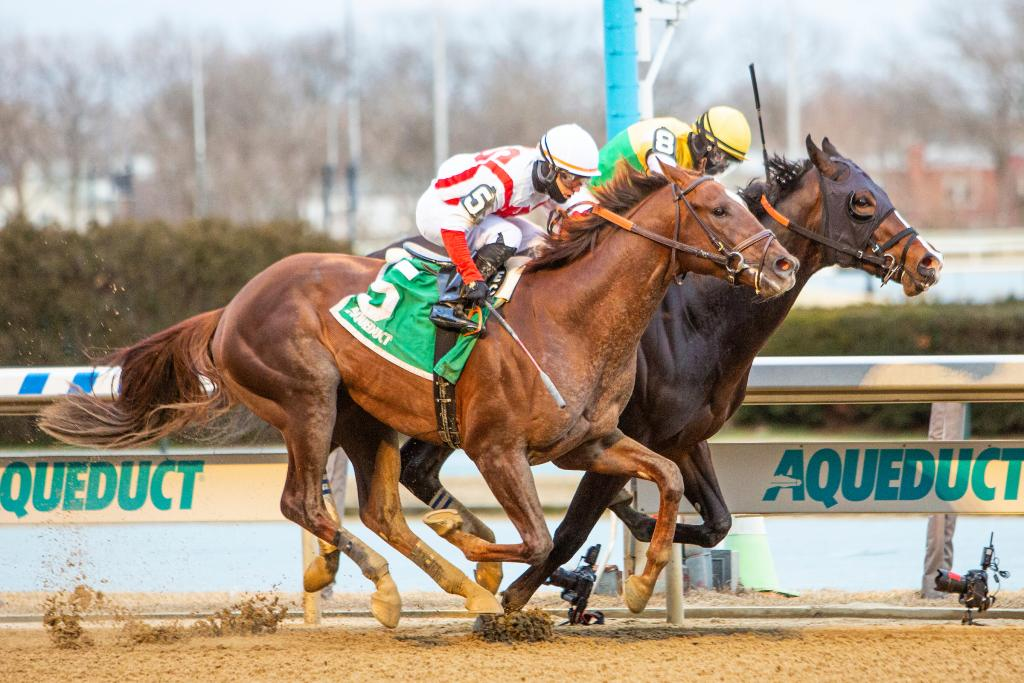 Wood Memorial Stakes Presented by Resorts World Casino third-place finisher Crowded Trade.
