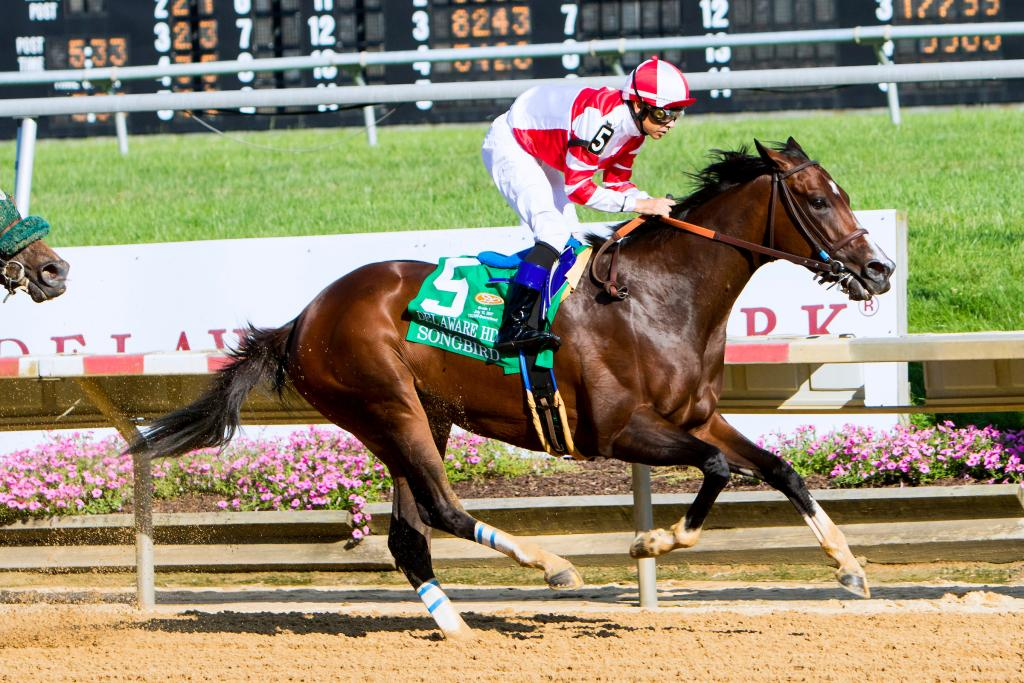 The final victory of Songbird's career came in the 2017 Delaware Handicap. (Eclipse Sportswire)