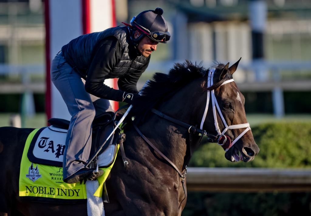 Noble Indy exercising at Churchill Downs. (Eclipse Sportswire)
