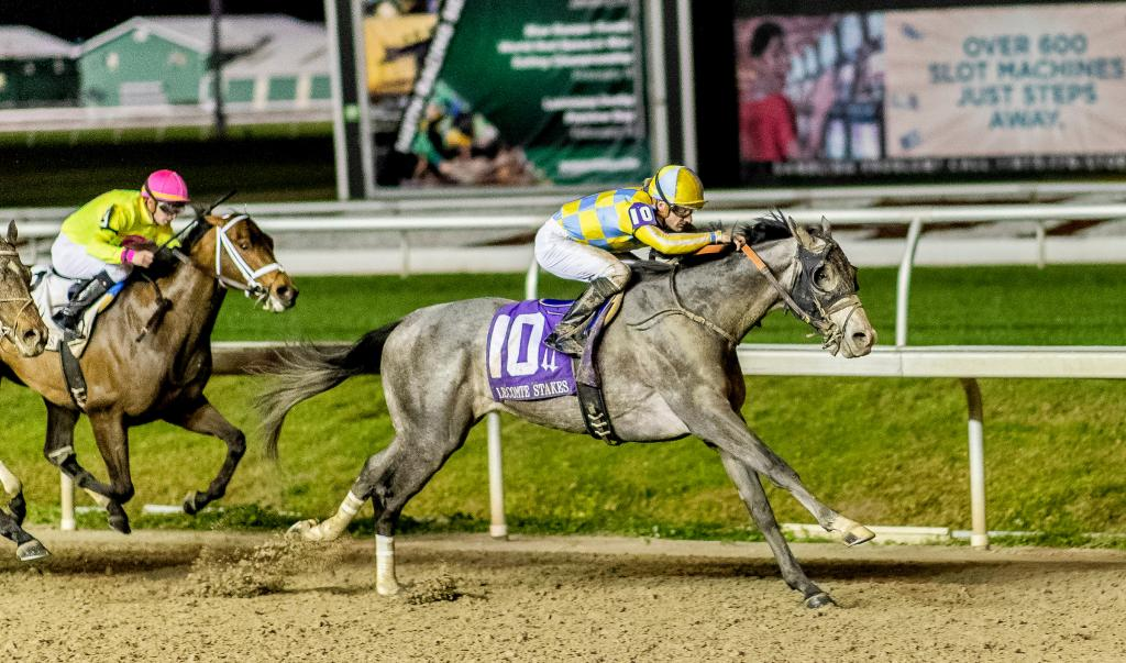 Enforceable winning the Grade 3 Lecomte Stakes in January at Fair Grounds.