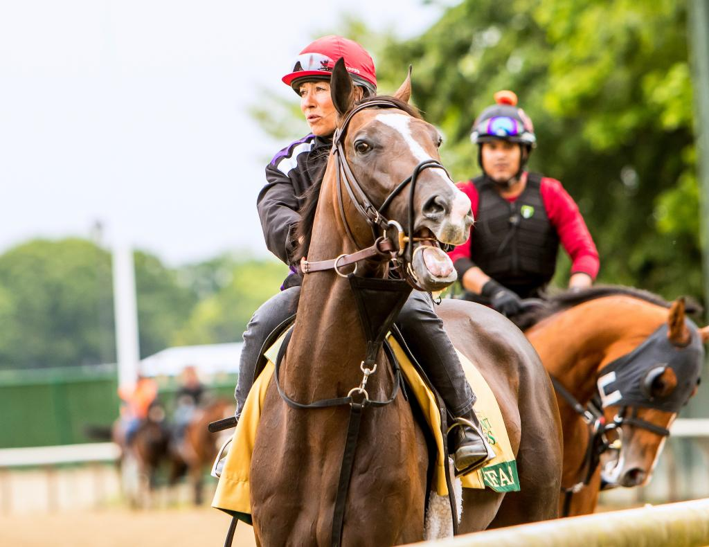 Preakness Stakes runner-up Everfast. (Eclipse Sportswire)