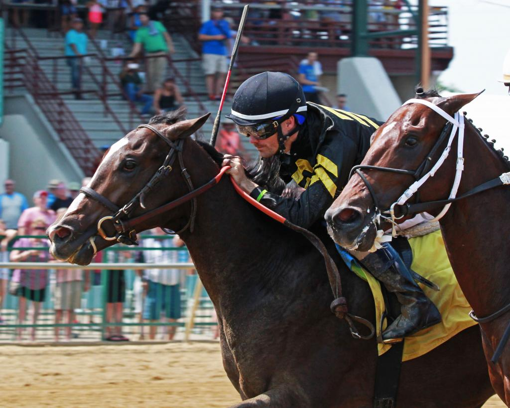 Preakness Stakes runner-up Everfast. (Coady Photography)