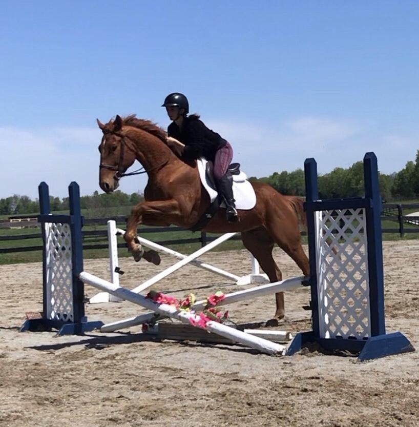 Their first ride together (again). Said Fada: The trust he has is incredible, as it was his first time jumping.