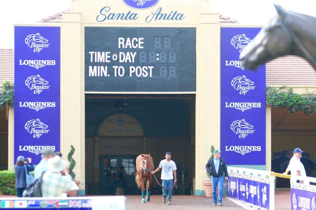 The Longines Distaff is going to be an unforgettable event this year, and I think we're going to see history at Santa Anita Park in just over two days when the gates open for Friday's $2 million race! (Penelope P. Miller/America's Best Racing)