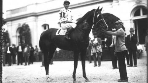1930 Triple Crown winner Gallant Fox after a win.  (Keeneland Library)
