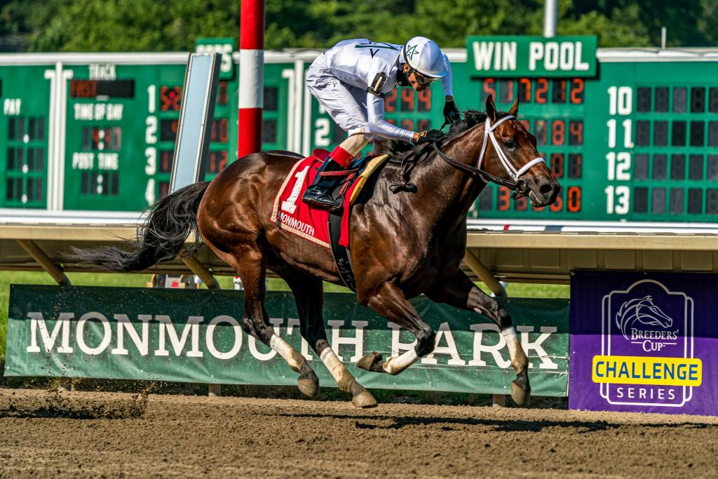2020 Woodward Handicap winner Global Campaign. (Eclipse Sportswire)