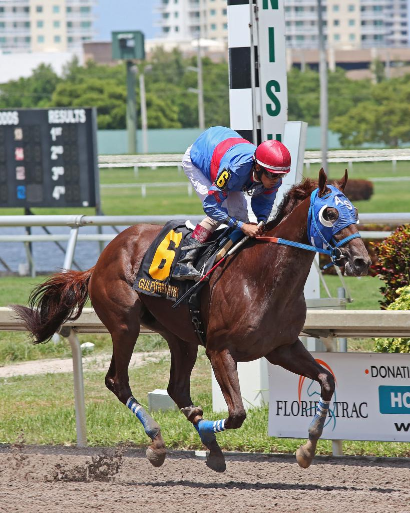 Gunnevera winning the Tangelo Stakes in August 2017. (Eclipse Sportswire)