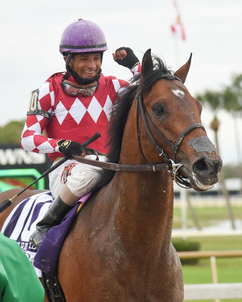 Lambholm South Tampa Bay Derby winner Helium.