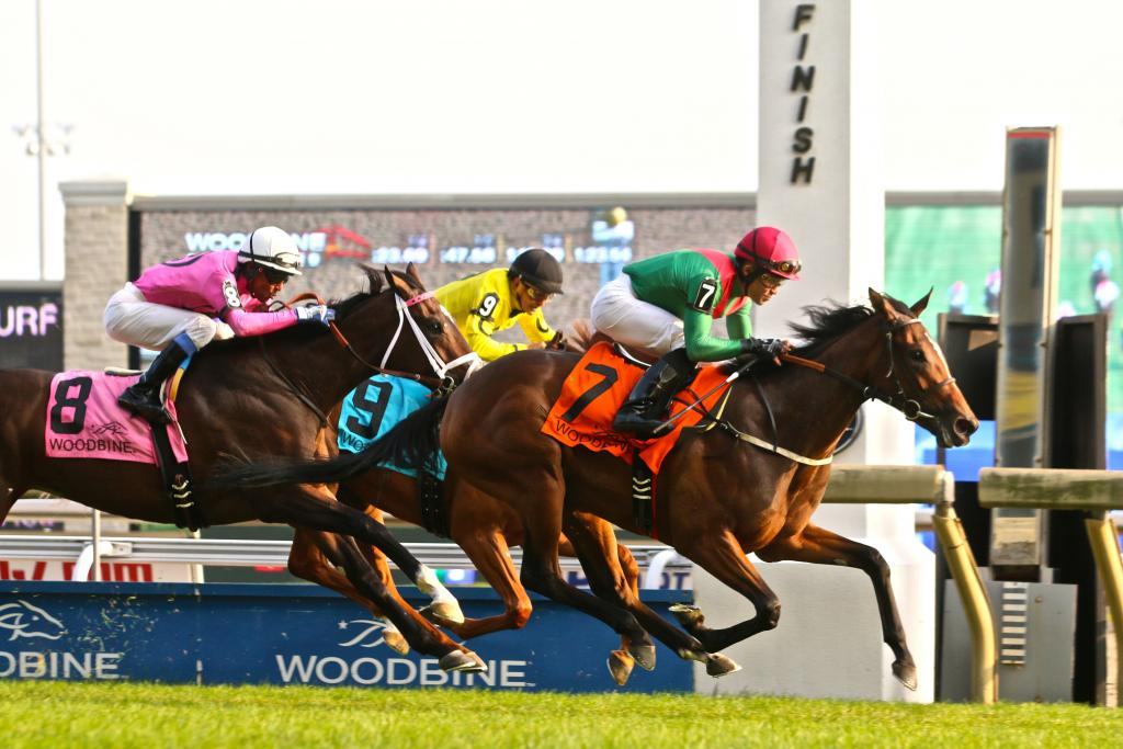 Capla Temptress gets up at the wire to win the Natalma. (Penelope P. Miller/America's Best Racing)