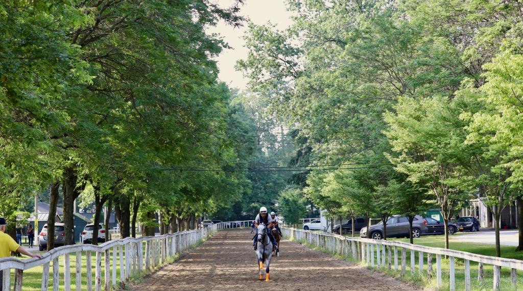 Mornings are majestic at Saratoga. (Penelope P. Miller/America's Best Racing)