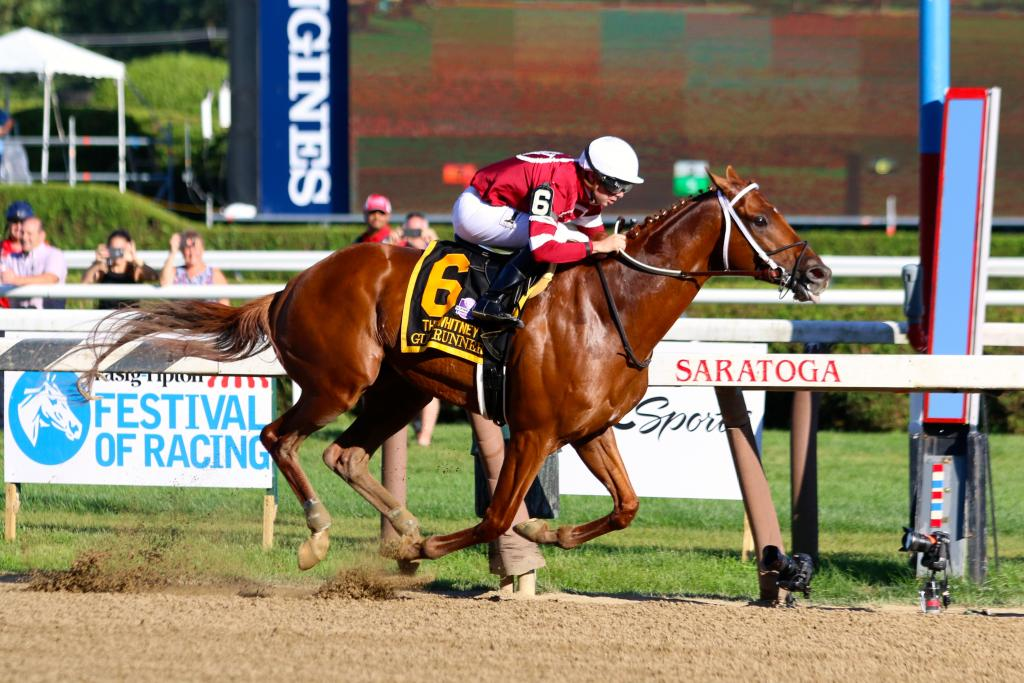 Gun Runner in complete command in the Whitney. (Penelope P. Miller/America's Best Racing)