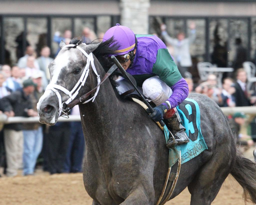 Peter Pan Stakes third-place finisher Intrepid Heart. (Keeneland/Coady Photography)