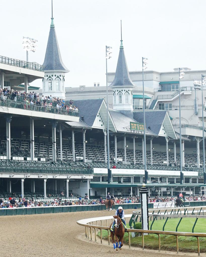 Kentucky Derby fourth-place finisher Improbable. (Coady Photography)