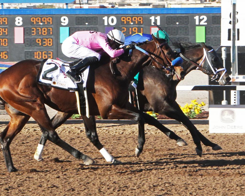 El Camino Real Derby winner Anothertwistafate, outside, running second in the Sunland Park Derby. (Coady Photography)