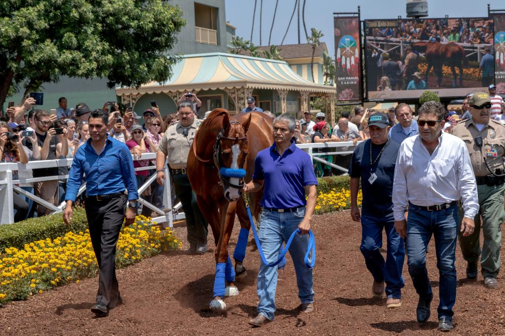 Justify parades at Santa Anita Park as the 13th Triple Crown winner. (Eclipse Sportswire)
