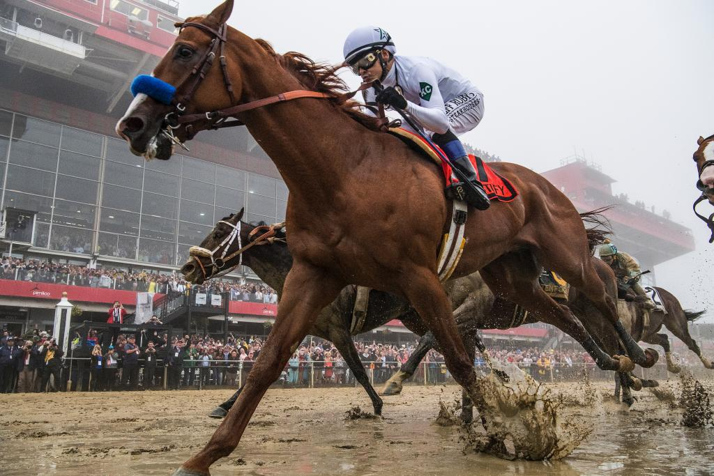 Justify winning the Preakness Stakes on May 19. (Eclipse Sportswire)