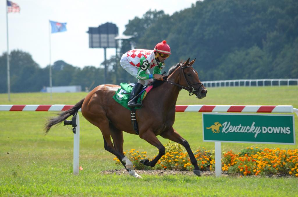 Sweeping Paddy proved that she may be the real deal when she won as easy as could be by 12 ¼ lengths. This was the second start for the filly and her first start on turf. (Melissa Bauer-Herzog/America's Best Racing)