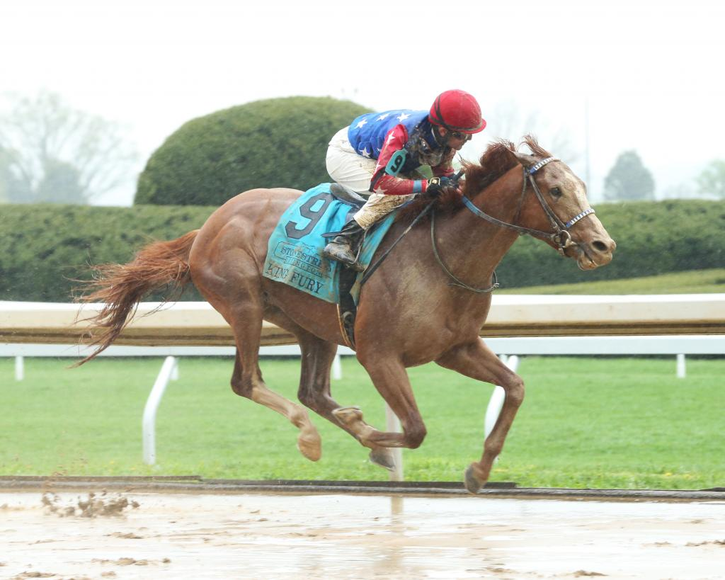 Stonestreet Lexington Stakes winner King Fury.