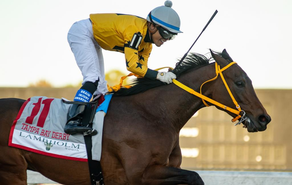 King Guillermo winning the Lambholm South Tampa Bay Derby.