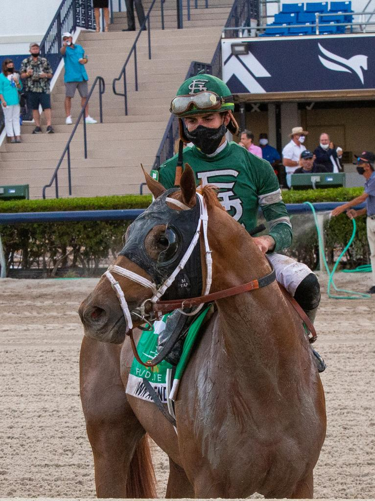 Curlin Florida Derby Presented by Hill 'n' Dale Farms at Xalapa winner Known Agenda.