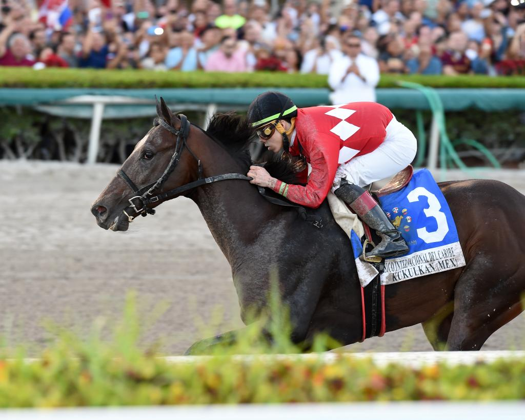 Undefeated Kukulkan, a champion in Mexico, winning the Caribbean Classic Stakes. (Lauren King/Gulfstream Park)