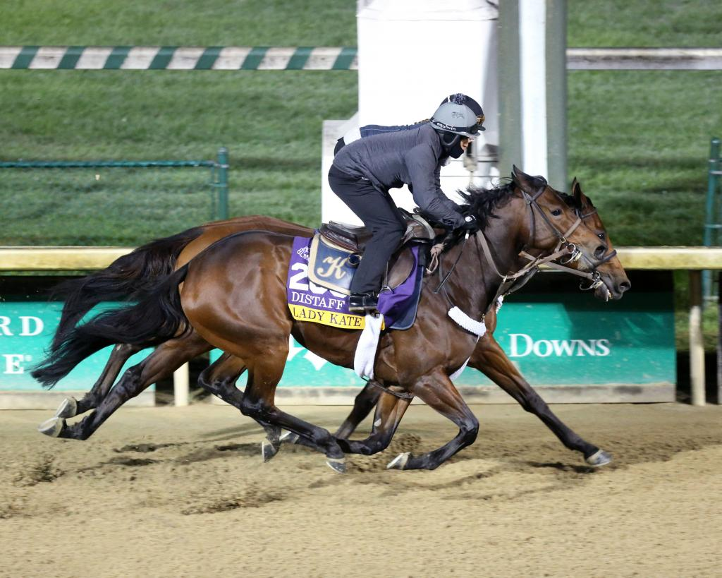 Grade 1-placed stakes winner Lady Kate. (Coady Photography)